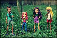Набор кукол Монстер Хай Семейство Вульф Monster High A Pack of Trouble Set