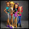 Набір ляльок Монстер Хай Сімейство Вульф Monster High A Pack of Trouble Set