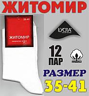 Носки женские демисезонные х/б Житомир, белые НЖД-90