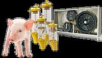 Кормораздача для свиней  (шайбо-трос Daltec)