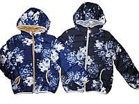 Куртка демисезонная для девочек на синтепоне, размеры 6 лет, F&D, арт. YY-2904, фото 1