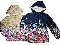 Куртка демисезонная для девочек на синтепоне, размеры ,8, лет, F&D, арт. YY-2935, фото 1