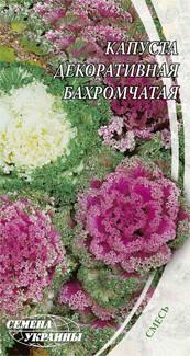 Капуста декоративная  ТМ Семена Укр.