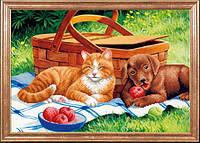 Дружба на пикнике МК КС-090
