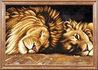 Львы отдыхают МК КС-091