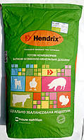 Добавка БМВД для свиноматок на лактации Хендрикс Лакто 20%
