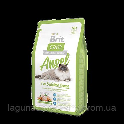 """Брит Кер """"Энджел"""" сухой супер-премиум корм для пожилых котов с курицей и рисом, гипоаллергенный, 2кг, фото 2"""