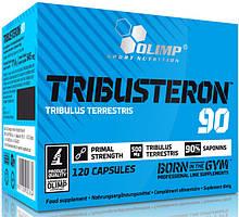 Бустер тестостерона Tribusteron 90 Olimp Sport Nutrition  (120 caps)