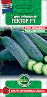 Огірок Гектор F1 (10 с.) (Голландія) Насіння ВІА (в упаковці 10 пакетів)