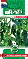 Огурец Директор F1 (10 сем.) (Голландия) Семена ВИА (в упаковке 10 пакетов)