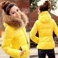 Короткая куртка на молнии, с капюшоном отороченным мехом енота