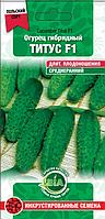 Огурец Титус F1 (0,5 г.) (Польша) Семена ВИА (в упаковке 20 пакетов)