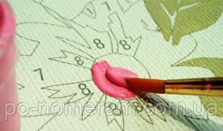 Инструкция по раскрашиванию картин по номерам