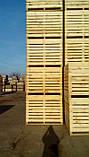 Контейнер деревянный 1600*1200*1200, фото 5