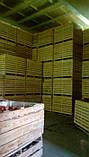 Контейнер деревянный 1600*1200*1200, фото 6