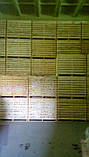 Контейнер деревянный 1600*1200*1200, фото 7