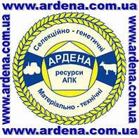 АРДЕНА – это база селекционно-генетических ресурсов в АПК