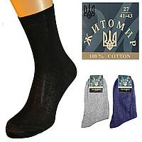 Носки женские и мужские Житомир 42
