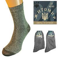 Носки женские и мужские Житомир 48