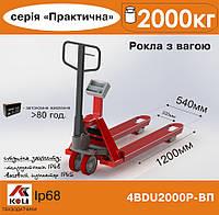 Весы-рокла Axis 4BDU2000P-ВП Практический