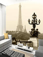"Фотообои ""Париж"", Текстуры: Холст, Иней, Декоративная штукатурка"
