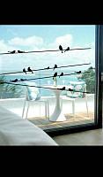 Виниловая наклейка на стены и стекла черные птицы