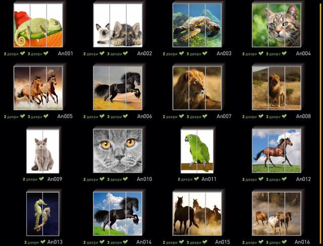 Фотопечать на двери шкафа купе, категория Животные (Фото №1)