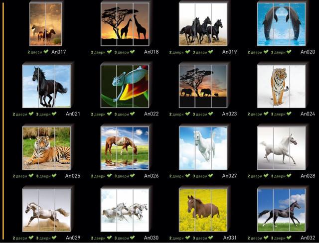Фотопечать на двери шкафа купе, категория Животные (Фото №2)