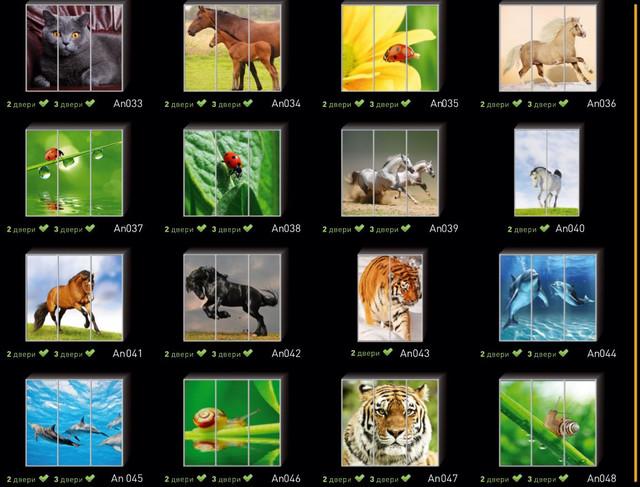 Фотопечать на двери шкафа купе, категория Животные (Фото №3)
