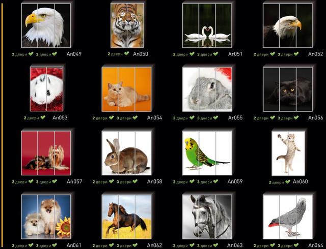 Фотопечать на двери шкафа купе, категория Животные (Фото №4)
