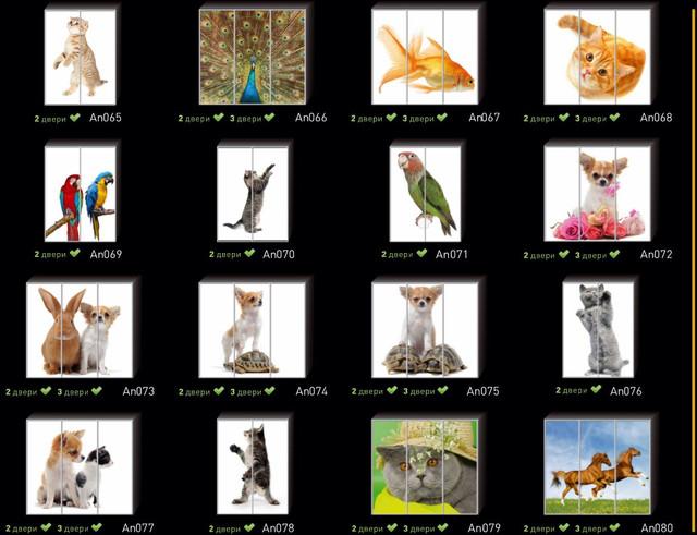 Фотопечать на двери шкафа купе, категория Животные (Фото №5)
