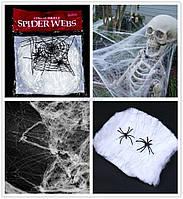Паутина неоновая с пауками - декор на хэллоуин!