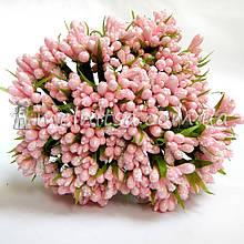 Сложные тычинки с мелким блеском, розовый
