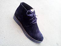 Ботинки замшевые женские осень-весна 36, 37, 38, 39, 40, 41 размеры, фото 1