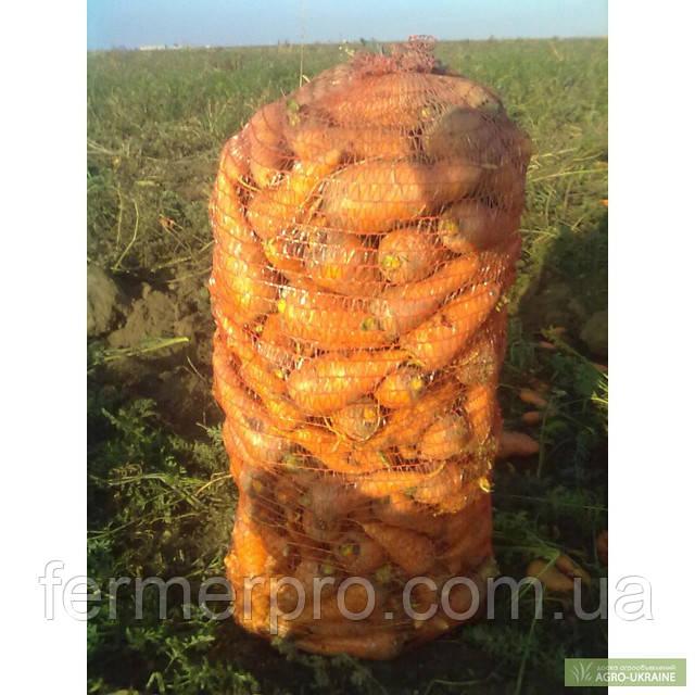 Морковь Роял Шансон Seminis 1 килограмм