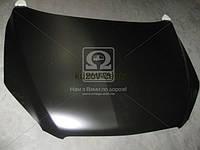 Капот Toyota RAV4 (Тойота РАВ4) 06- (пр-во TEMPEST)
