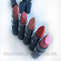 Помада для губ зволожуюча Aden cosmetics Hydrating lipstick 04 Sienna 3,5 gr, фото 2