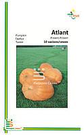 Семена Тыквы Атлант( мелкая фасовка)10с