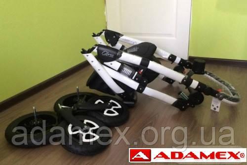 Детская универсальная коляска 2 в 1 Adamex Gloria рама