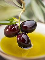 Исследование рынка оливок, маслин и оливкового масла