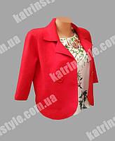 Модное женское болеро красного цвета