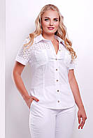 Модные блузы в больших размерах | блуза Фауста-Б к/р