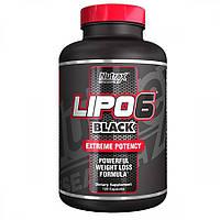 Lipo-6 Black Extreme Potency Nutrex 120 сaps
