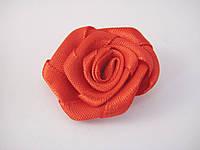 Цветок Роза красная