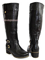 Сапоги женские кожаные демисезонные на невысоком каблуке, фото 1