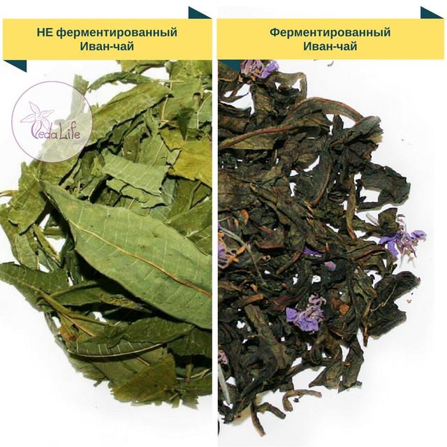 Что такое ферентация чая? Зачем ферментируют иван-чай?