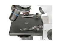 Микроскоп к 1 сентября