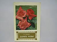 Ткачук А.А. Дарите розы (б/у)., фото 1