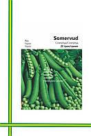 Семена Гороха Сомервуд (большая фасовка)20гр
