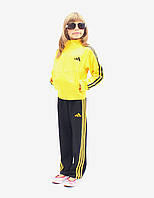Детский Спортивный костюм для девочек и мальчиков с цветной кофтой, из практичного эластичного материала.